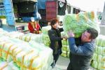 大白菜价格降至近5年最低 新发地批发价为0.2-0.25元