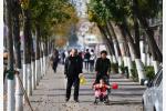 北京西部北部或有雪 本周气温走高或升至12℃