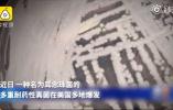 """死亡率超50%、中国18例感染?""""超级真菌""""没有那么""""玄"""""""