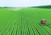 河南渑池:确保耕地地力保护补贴精准发放