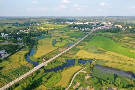 """河南信阳:""""多彩田园""""铺就绿色发展之路"""