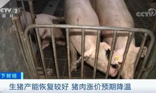 农业农村部:生猪产能恢复较好 全国猪肉价格连续4周回落